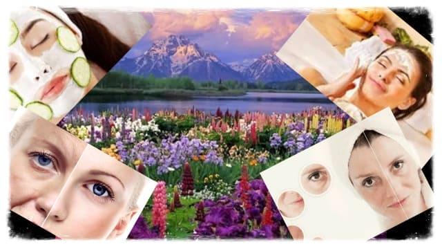 Ежедневный уход за лицом в домашних условиях, маски для увядающей, жирной и сухой кожи, домашние рецепты