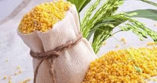 Пшено польза и вред для организма, как готовить при различных заболеваниях, сколько и как есть, рецепты