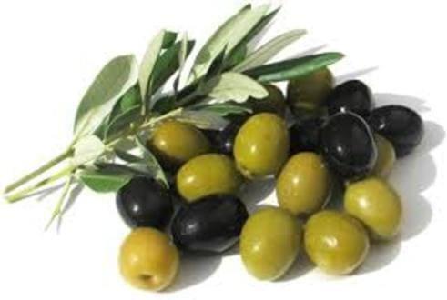 Как сохранить молодость ― оливковое масло для кожи лица, золотые маски для волос