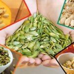 Чем полезны тыквенные семечки, состав, калорийность, лечение семенами