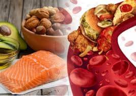 норма холестерина для женщин