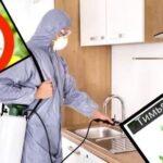 Клопы домашние как от них избавиться народными средствами и с помощью бытовой химии ― 5 эффективных способов